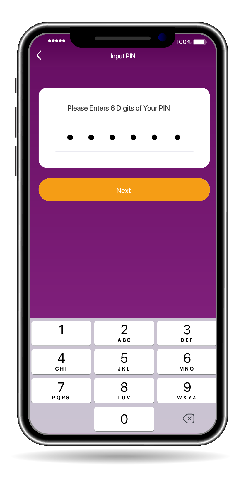 Input PIN/Use Fingerprint